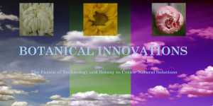 Botanical Innovations Logo 2